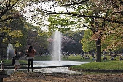 Yoyogi park